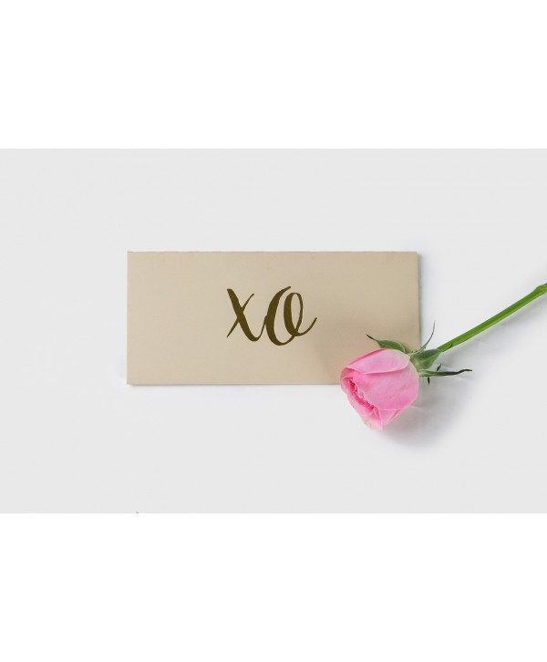 XO GOLD FOILED MONEY/SHAGUN ENVELOPES